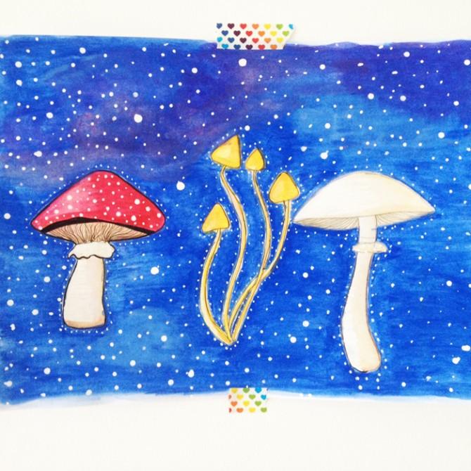 ilustra cogumelos