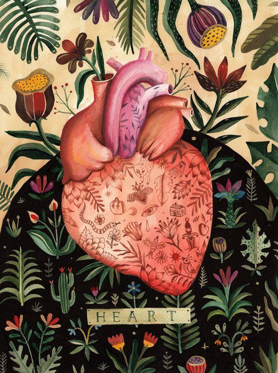 coração ilustrado